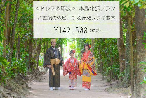 【ドレス&琉装】本島北部プランイメージ