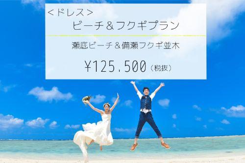 【ドレス】ビーチ&フクギプランイメージ