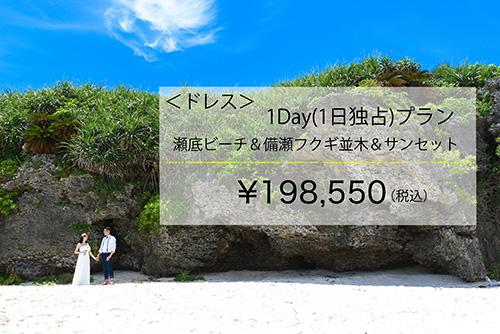 【ドレス】1Day(1日独占)プランイメージ
